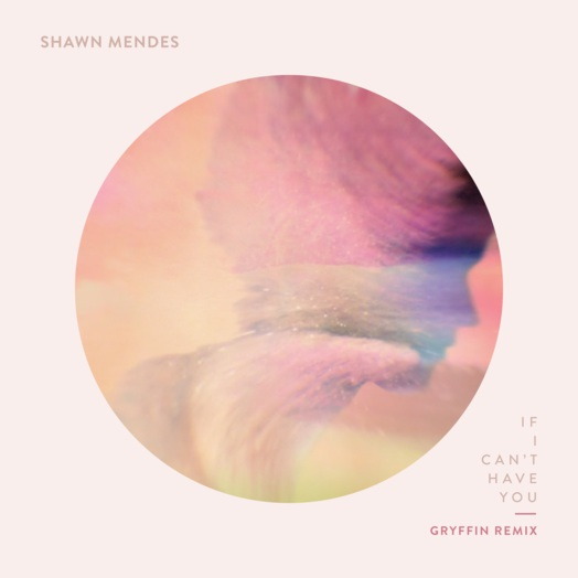 Shawn Mendes / If I Can't Have You (Gryffin Remix)
