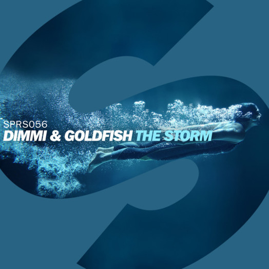 Goldfish & DIMMI / The Storm