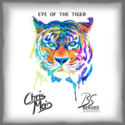 Chris Meid & Berger & Shaqiri / Eye Of The Tiger