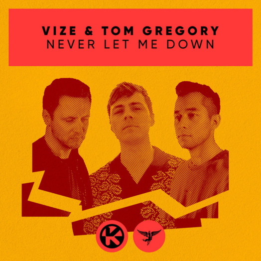 VIZE, Tom Gregory / Never Let Me Down