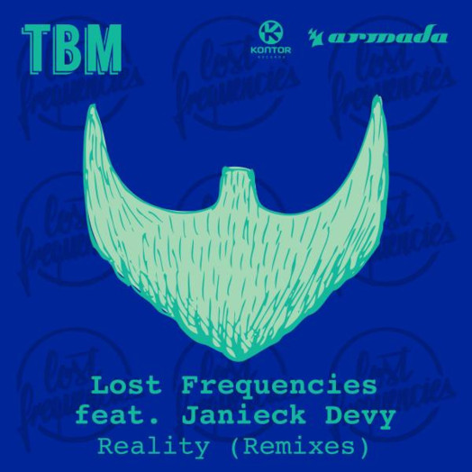 Lost Frequencies / Reality (feat. Janieck Devy) [Möwe Remix]
